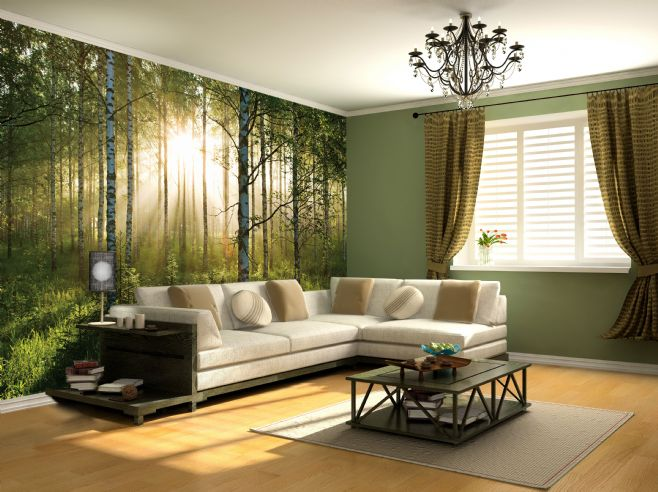 Giant wallpaper wall mural forest trees themed design